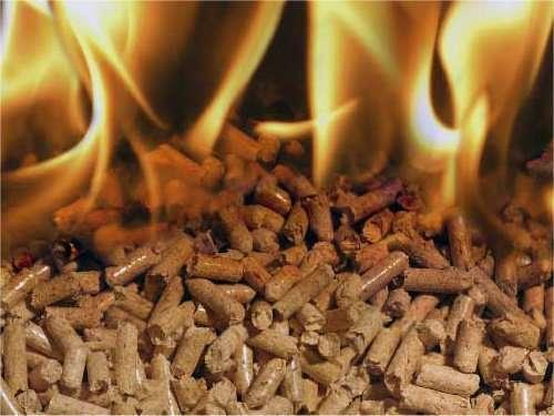 Agripellets – Straw & Miscanthus Biofuel Pellets