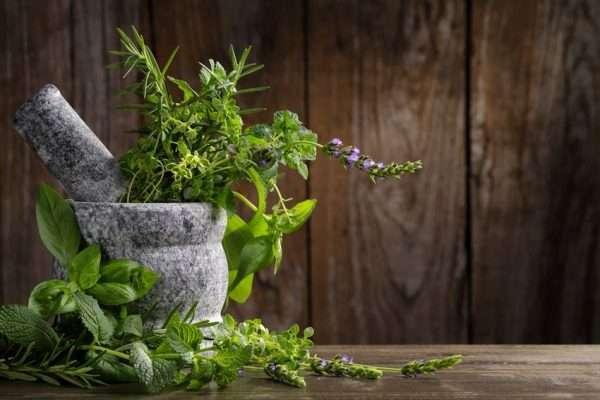 Alan Payne – Consultant Herbalist & Naturopathic Iridologist