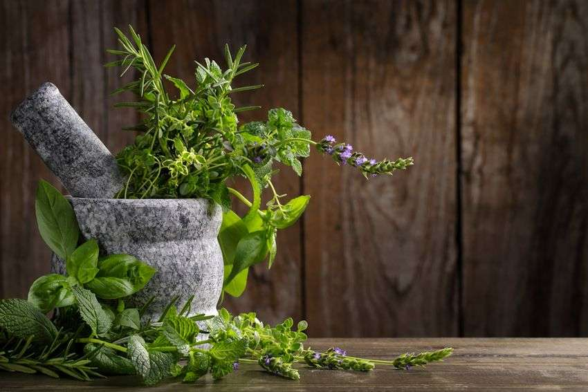 Alan Payne - Consultant Herbalist & Naturopathic Iridologist